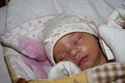 SOFINKA I MARUŠKA. SOFIE MARIE TANGLOVÁ se narodila 30. ledna 2017 v 13.13 hodin s mírami 2 670 g a 45 cm. Rodiče Simona a Lukáš si radostně odvezli své první miminko domů do Milovic.
