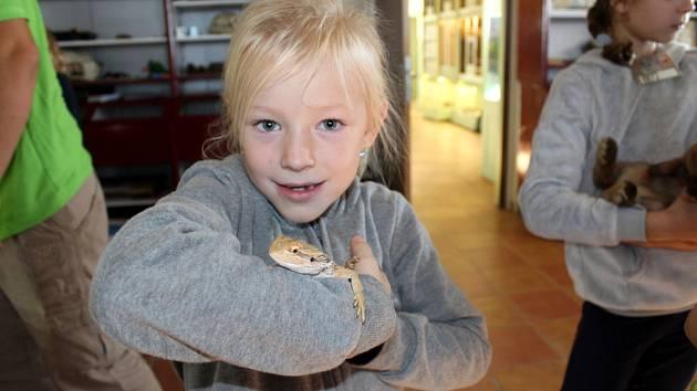 Děti strávily podzimní prázdniny v zoo mezi mazlíčky.