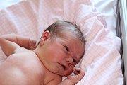 HELENKA PO MAMINCE. HELENA PAVLÍČKOVÁ je princeznička narozená 16. června 2017 v 12.03 hodin s mírami 3 460 g a 50 cm. V Lysé nad Labem má rodiče Helenu a  Michala a sourozence Jindřicha (17), Richarda (10) a Roberta (7).