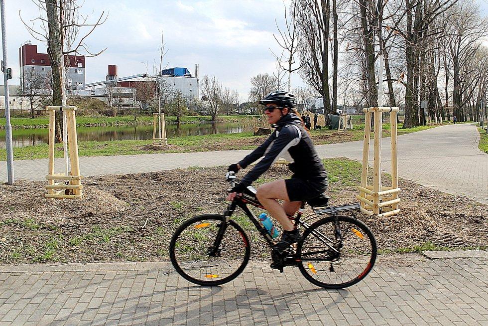 Novou podobu má část labské cyklostezky u hasičského hřiště, kolem železničního mostu a dále směrem k dokům.