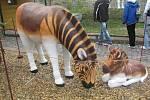 Vyhynulý druh zebry Kvagy z betonu