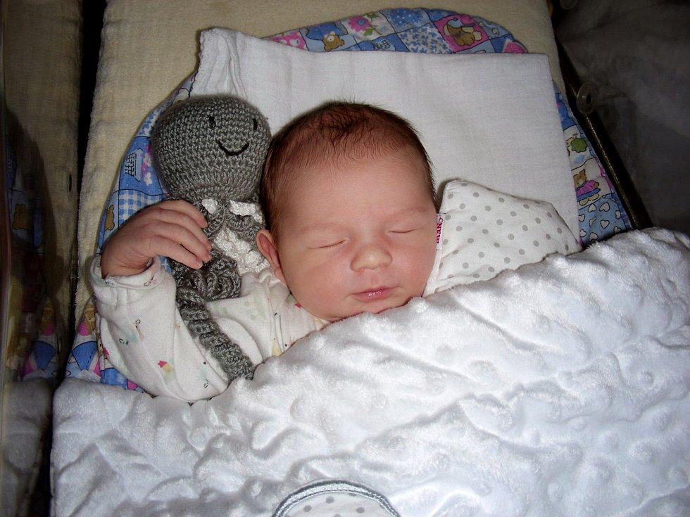 JIŘÍ ONISKO se narodil 8. února 2019 v 0:00 hodin v hořovické porodnici, vážil pěkných 3 970g a měřil 53 cm. Z Jiříčka se radují manželé Alena a Jakub společně se sestřičkou Aničkou (2 ¾ roku).