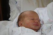 O DORINCE SE VĚDĚLO. DORA NOVÁKOVÁ je holčička narozená 31. ledna 2017 v 8.19 hodin s mírami 3 280 g a 49 cm. Je zatím prvním zlatíčkem rodičů Radky a Petra z Krupé.