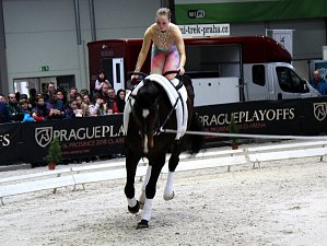 Od středy se v Lysé konala výstava Zemědělec a současně v jiné haly závodili koně.