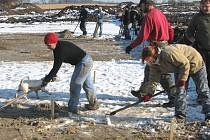 Archeologové upravovali terén poblíž firmy Cadence