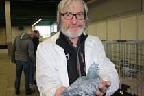 Celostátní výstava poštovních holubů se konala na výstavišti v Lysé