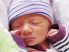 RAFAEL DOLEJŠ se narodil jako prvorozený 12. ledna 2018 v 21.18 hodin s výškou 46 cm a váhou 2430 g. Doma v Nymburce se z něj radují rodiče Jakub a Zuzana.
