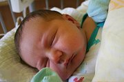 ADAM GEBHART se narodil 4. listopadu 2018 ve 4.04 hodin s délkou 51 cm a váhou 4 260g. Rodiče Karolína a Zdeněk z Lysé nad Labem se na prvorozeného chlapečka předem těšili.