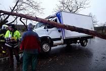 Strom se zřítil na dodávku přesně ve chvíli, kdy projížděla kolem. Řidič unikl smrti jen o vlásek.
