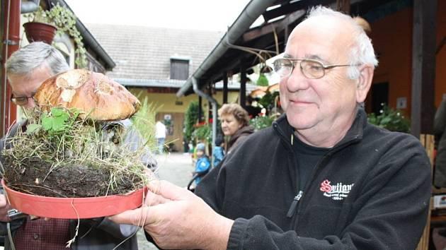 Výstava hub v Čelákovicích.