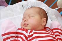 NATÁLKA JE SESTŘENICÍ VIKIHO. Natálie SCHWARZOVÁ se narodila 18. srpna 2015 v 9.47 hodin s mírami 3 770 g a 51 cm.  Zatím je prvním miminkem rodičů z Velelib, ale už má o den a půl staršího bratrance. Viki ležel v porodnici v postýlce hned vedle...