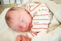 David Bauer, Opočnice. Narodil se 10. března 2020 ve 12.48 hodin v nymburské porodnici. Vážil 3600 g a měřil 49 cm. Chlapečka si odvezli domů rodiče Petra a David.