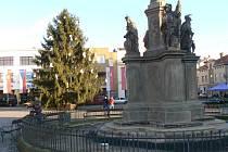 Navrácený Mariánský sloup na náměstí Přemyslovců