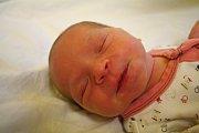 LILIANA ŠÍROVÁ se narodila 20. listopadu 2018 ve 2.34 hodin s délkou 47 cm a váhou 2 890g. Rodiče Věra a Gustav z Lysé nad Labem se na prvorozenou holčičku předem těšili.