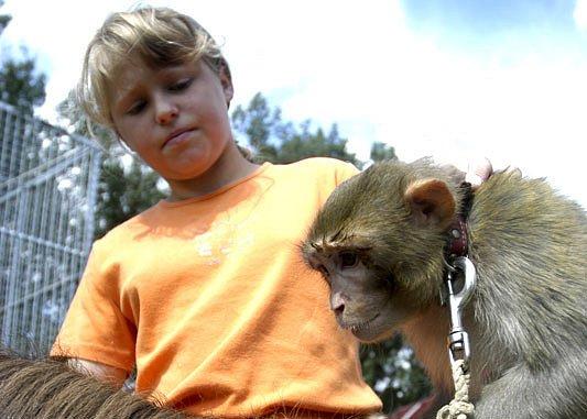 Opička Jasmína na poníkovi Zuzance.