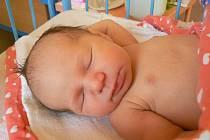 FILIP A MARTIN MAJÍ SESTŘIČKU. Ve středu 29. října ve 21.55 hodin se rodičům Lukášovi a Monice z Nymburka narodila dcera Zuzanka Rajdlová. Očekávaná holčička měřila 48 cm a vážila 3370 g.