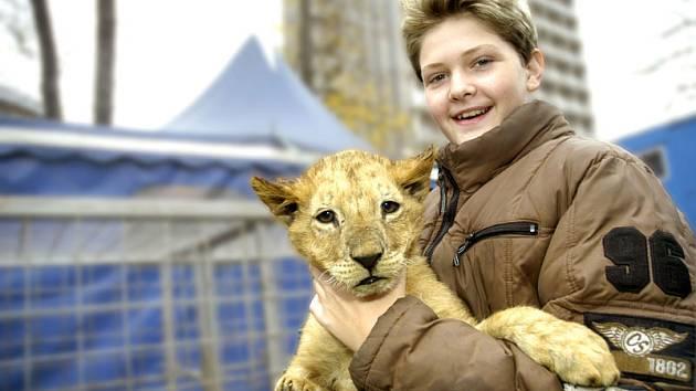 Lvíček Sultán s Alexem Poláchem juniorem.