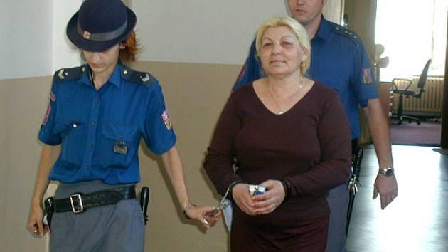 Viola Daničová u soudu na konci roku 2006. Včera přišla k soudu samabez policejní eskorty.