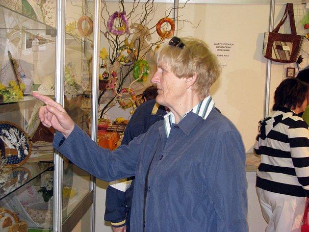 V Lysé nad Labem se do neděle konají výstavy Narcis a Senior.