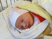 ELIŠKA NEJEDLÁ se narodila 29. 12. 2017 v 1.31 s výškou 49 cm a váhou 2 940 g. S rodiči Jaroslavem a Danou a sestrou Andrejkou bydlí v Cerhenicích.