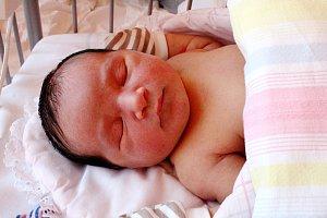 STELA DOMINIKOVÁ se narodila 11. února 2018 ve 21.30 hodin s výškou 51 cm a váhou 4 300 g.  Z druhého potomka se radují rodiče Petra a Radek ze Struh a také bráška Vilém (9).