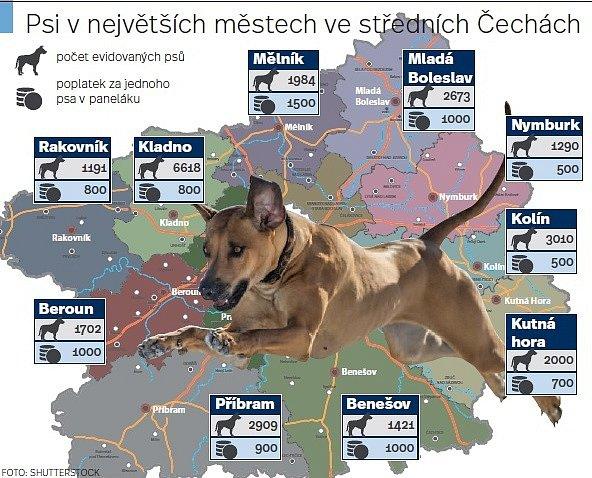 Psi vnejvětších městech kraje