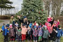 Děti a učitelky ze školky U Ježka ozdobily stromek v areálu královéměstecké nemocnice.