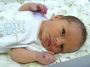 ŠIMON ZAJAN se narodil 20. března 2018 v 11.15 hodin s délkou 49 cm a váhou 3 000 g. Na kluka se těšili rodiče Roman a Michaela i sedmiletá sestřička Anička z Vykáně.