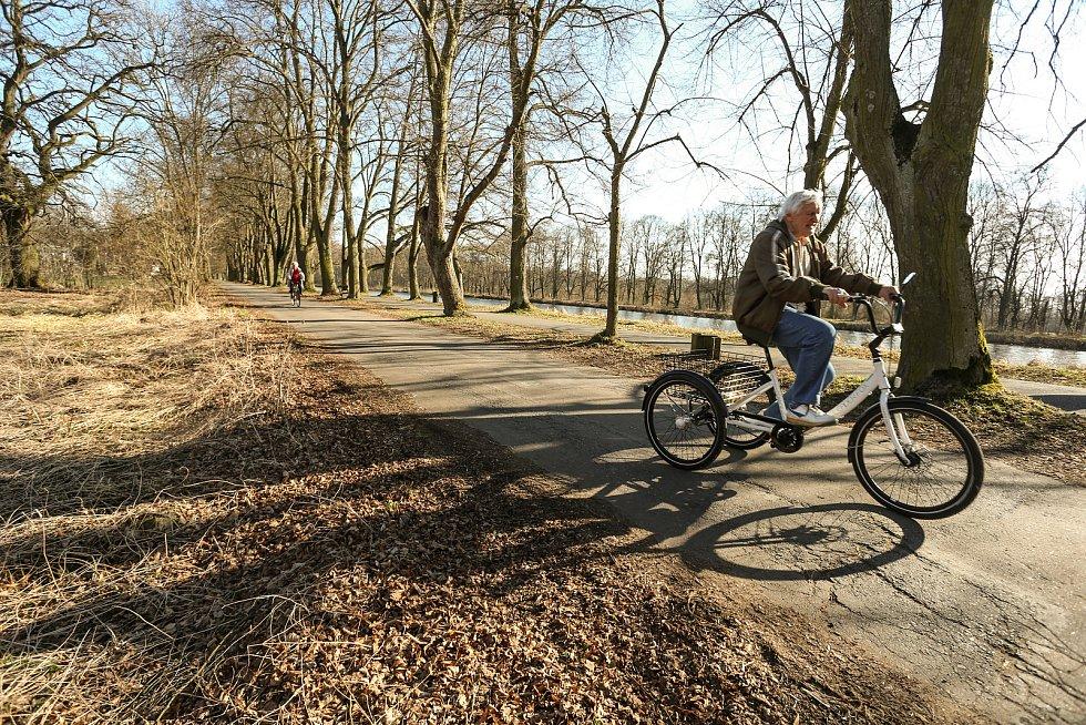 Labská cyklostezka mezi Poděbrady a Kolínem.