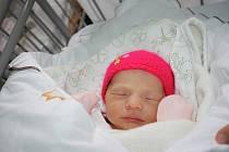 ZOE? ZOE! Zoe BANDOROVÁ se narodila poslední lednový den roku 2016 v 19.51 hodin. První miminko maminky Ellen a táty Matěje z Milovic vážilo 2 490 g a měřilo 46 cm, což je na malou slečnu tak akorát.