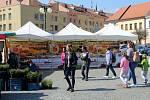 Food festival na nymburském náměstí.
