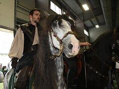Výstaviště v Lysé nad Labem patří až do neděle koním.