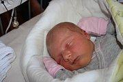 ADÉLKA JE PRVNÍ. ADÉLA HOLUBOVÁ přišla nasvět 2. července 2017 ve 14.17 hodin. Z miminka s mírami 3 680 g a 50 cm se radují  maminka Olina a táta Lukáš. Že si domů na Loučeň přivezou dcerku, věděli předem.