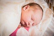 Viktorie Koláčná, Poděbrady. Narodila se 8. června 2019 ve 14.21 hodin, vážila 3 610 g a měřila 49 cm. Na svou první holčičku se těšili rodiče Klára a Filip.