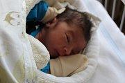 FRANTIŠEK Z NYMBURKA. FRANTIŠEK ČERVEŇÁK se narodil 11. dubna 2017 v 8.46 hodin. Vážil 2 720 g a měřil 46 cm. Chlapeček je po Pavlíčkovi druhým potomkem rodičů Nikoly a táty Pavla.