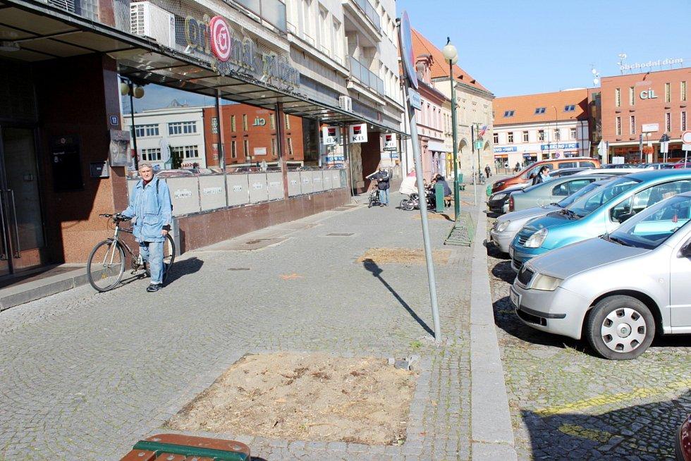 Stromy na straně nymburského náměstí, kde sídlí radnice, už byly odstraněny.