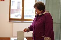 Lidé dorazili k předčasným volbám.