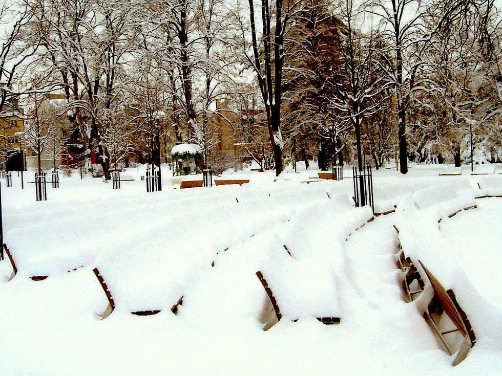 Lázeňský park 11. ledna 2010.