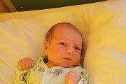 JINDŘICH, JINDŘÍŠEK. Jindřich FRANTÁL se narodil 1. listopadu 2015 v 6.47 hodin. Klouček s mírami 3 440 g a 50 cm bude bydlet s maminkou Michaelou, tátou Lukášem a tříletým bráškou Zbyňkem v Čelákovicích.
