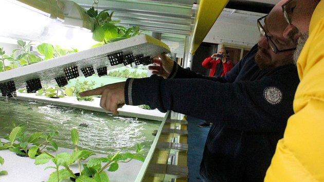Systém fungování akvaponie v praxi předvedl podnikatel Bohuslav Škoda v pondělí v bunkru u hřbitova.