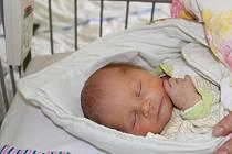 PODĚBRAĎÁK HONZÍK. JAN ŠKARVADA je klouček narozený 2. března 2017 v 8.42 hodin. Míry zatím prvního potomka maminky  Veroniky a táty Jiřího byly 3 160 g a 47 cm. Že to bude chlapeček, věděli rodiče předem.