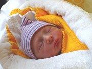 VÁCLAV BATELA se narodil 28. 12. 2017 ve 14.13 hodin s výškou 48 cm a váhou 2 670 g. Prvorozený bydlí s rodiči Štěpánem a Veronikou v Českém Brodě.