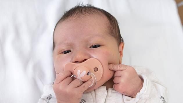 Vanda Mrzenová z Chlumce nad Cidlinou se narodila v nymburské porodnici 16. září 2021 v 7:52 s váhou 3380 g a mírou 48 cm. Na holčičku se těšila maminka Soňa, tatínek Jan a bráška Eliáš (8 let).