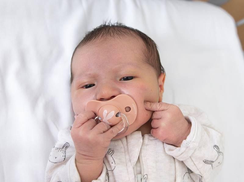 Vanda Mrzenová z Chlumce nad Cidlinou se narodila v nymburské porodnici 18. září 2021 v 7:52 s váhou 3380 g a mírou 48 cm. Na holčičku se těšila maminka Soňa, tatínek Jan a bráška Eliáš (8 let).