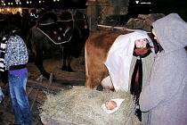Náměstí Jiřího se zaplnilo stánky, pod rozsvíceným vánočním stromem lidé obdivovali živý betlém.