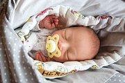 HYNEK HERMAN přišel na svět 30. listopadu 2018 v 8.35 hodin s mírami 50 cm a váhou 3 100g. Rodiče Kateřina a Jakub si očekávaného prvorozeného syna odvezou domů do Nymburka.