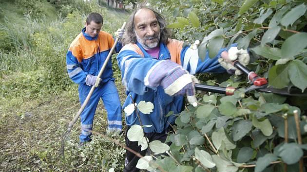 Pracovníci technických  služeb čistí už více jak čtrnáct dní tok v ulici Malé Valy.