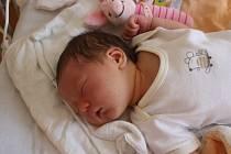 MAJKA JE ZATÍM JEDINÁČEK. Maya Moistner poprvé spatřila světlo světa na porodním sále 22. srpna 2016 v 15:14. Holčička rodičů Jany a Matthewa z Čelákovic vážila 3 800 g a měřila 52 cm. Rodiče si dopředu nechali prozradit, že jejich první bude slečna.