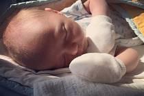 PÉŤA ZE SEMIC. PETR ŠENKÝŘ  se narodil 18. srpna 2016  v 17.31 šťastným rodičům Lucce a Petrovi ze Semic. Péťa nebyl žádný drobeček, jeho míry byly 3 800 g a 50 cm. Klouček, o němž se vědělo předem, se má čile k světu a dělá všem jen samou radost.