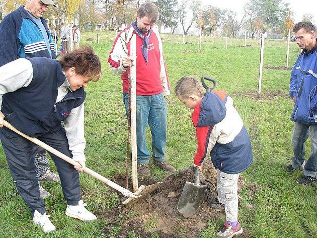 Pětačtyřicet stromů vysázeli účastníci Starolyského švetkování.